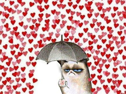 Картинки по запросу день валентина в компании кошки